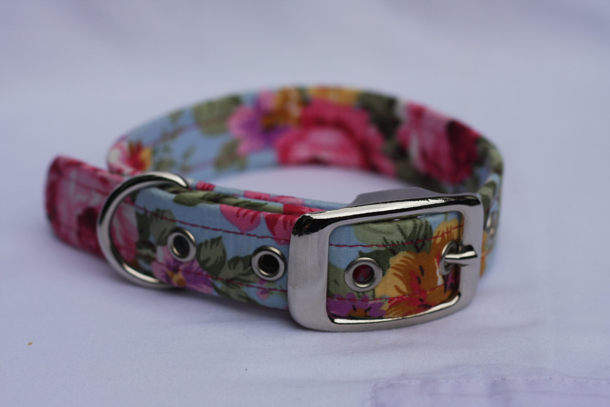 blue dog collar with pink country flowers