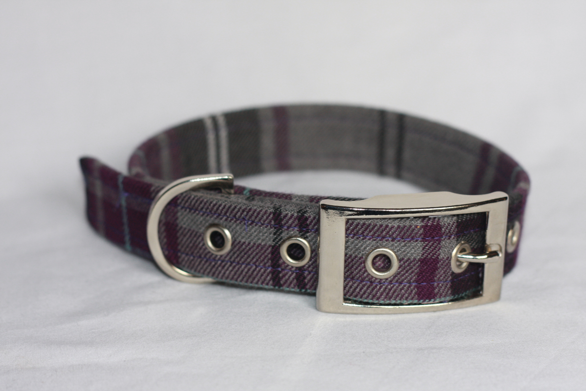 purple , grey dog collar in tartan