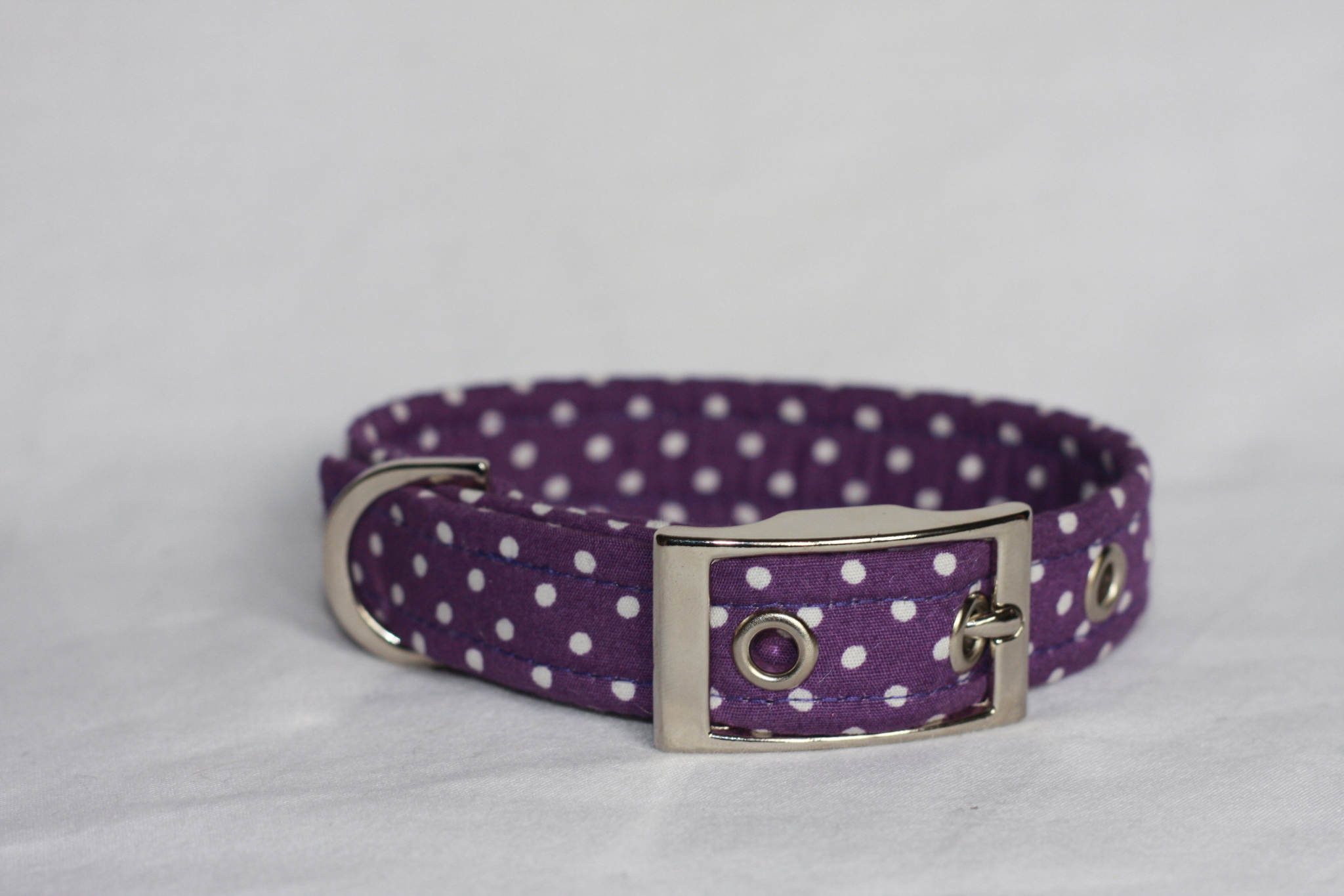 purple dog collar with white spots