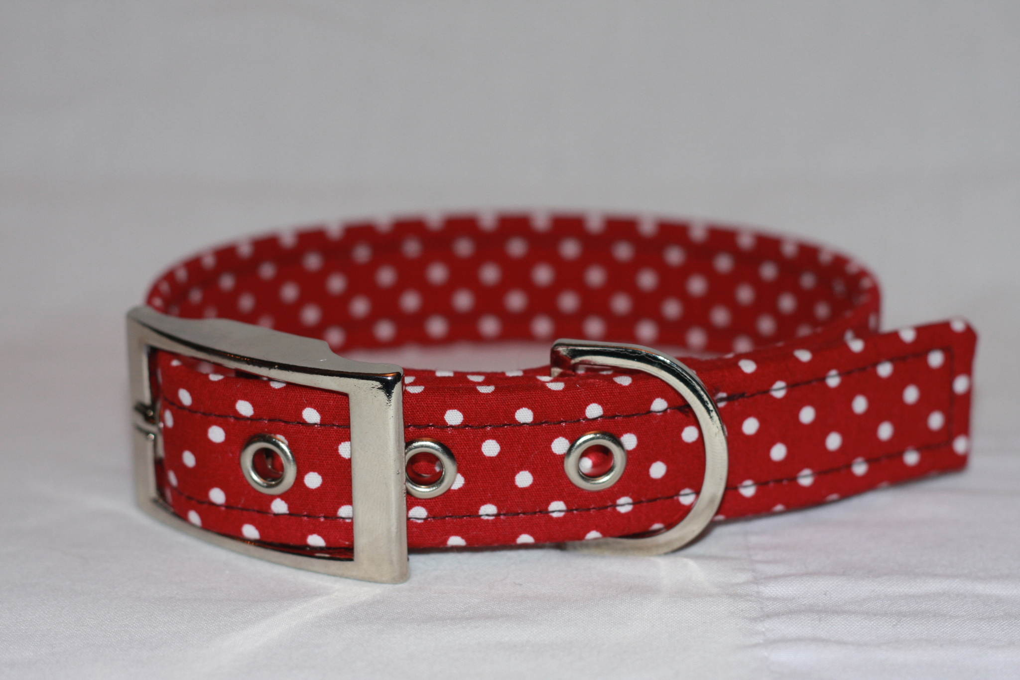 wine dog collar with white spots