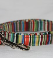 blue dog lead with stripes