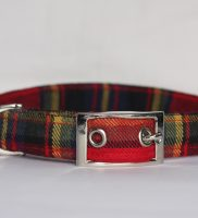 red blue yellow tartan Dog Collar